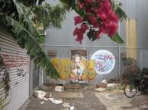 graffiti walk Footscray laneway bourganvillea