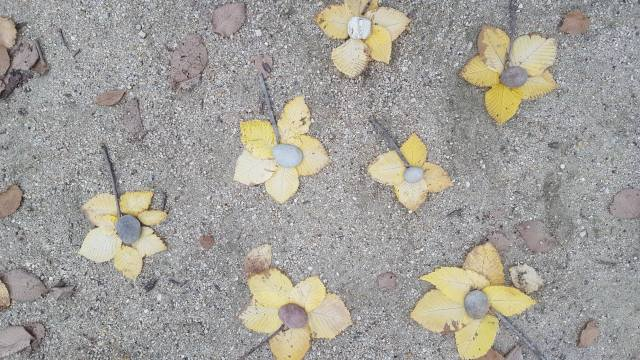 yellow flowers from autumn leaves