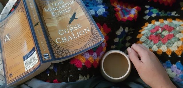 staying in bed with a book