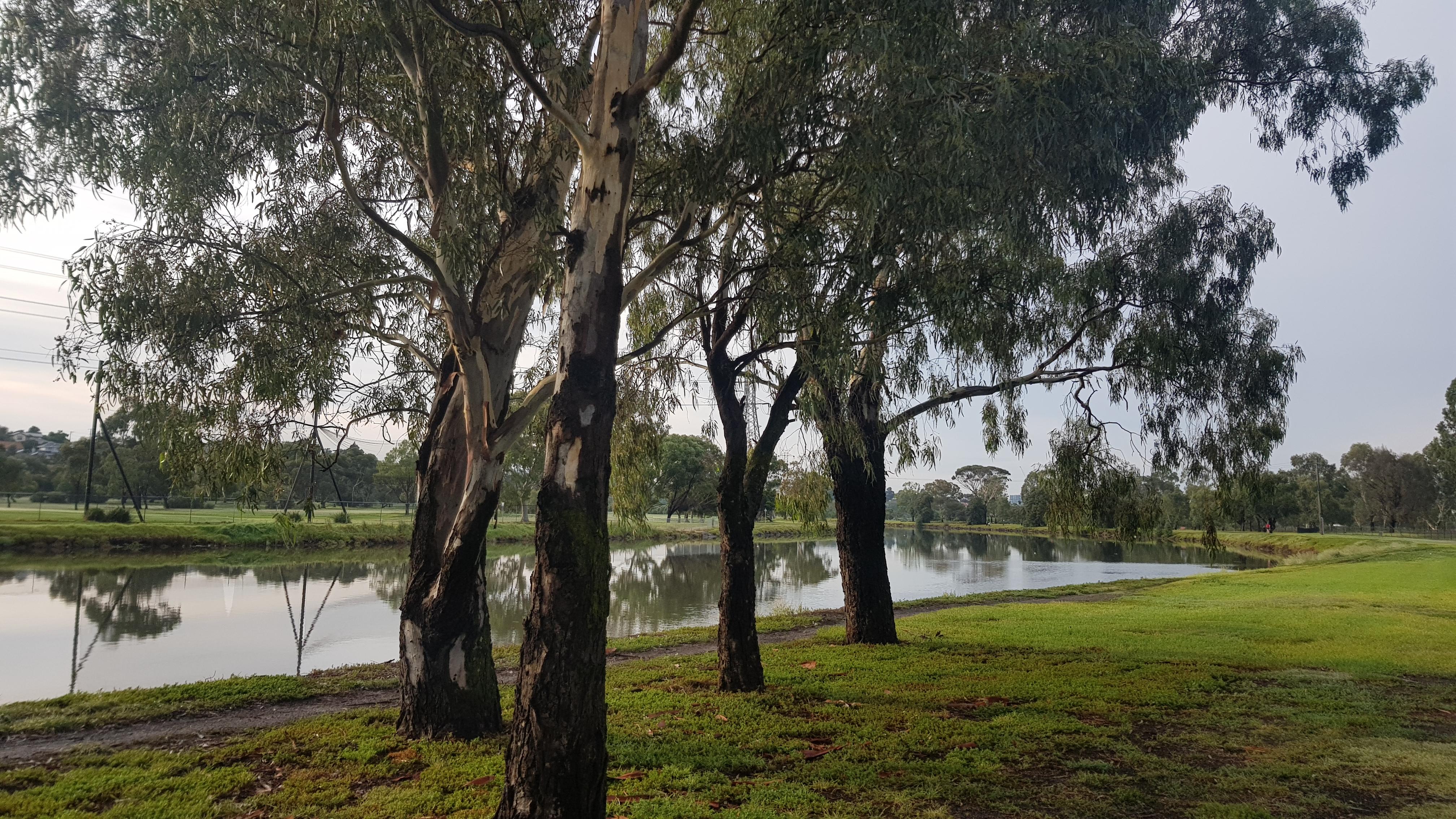 Maribyrnong river footscray